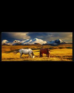 Tavla Canvas 60x150 Prärie