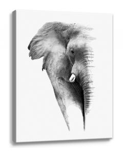 Tavla Canvas 50x70 Elephant Head