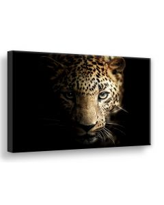 Tavla Canvas 75x100 Leopard