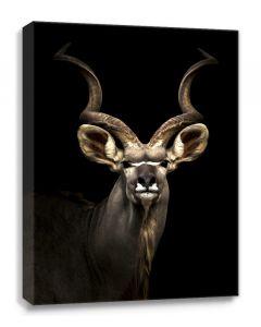 Tavla Canvas 100x75 Antilop