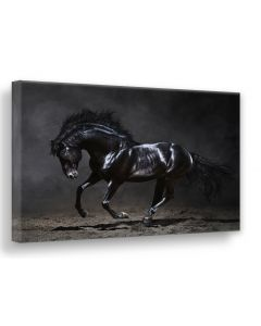 Tavla Canvas Silver 75x100 Black Horse