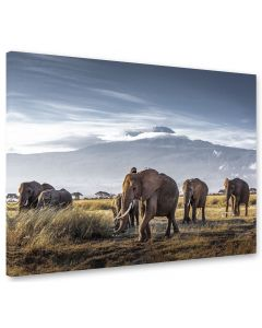 Tavla Canvas 75x100 Elephants by Kilimajaro