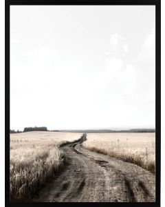 Poster 30x40 Nature Road (planpackad)