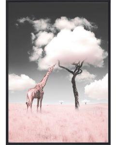Poster 30x40 Pink Giraffe Candy Tree (planpackad)