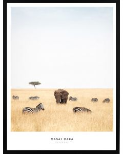 Poster 30x40 Masai Mara Elephant (Planpackad)