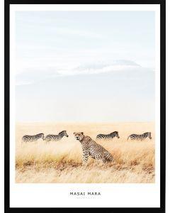 Poster 30x40 Masai Mara Leopard (Planpackad)