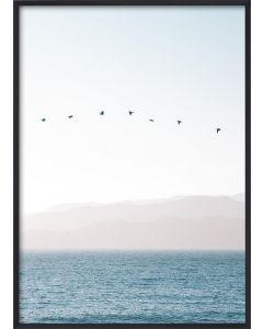 Poster 50x70 Pastel Blue Sea (Planpackad)