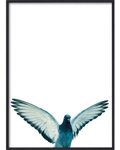 Poster 42x59,4 A2 Birdie