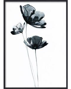 Poster 50x70 Blue Flower (Planpackad)